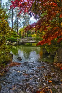 Fall at The Japanese Gardens...