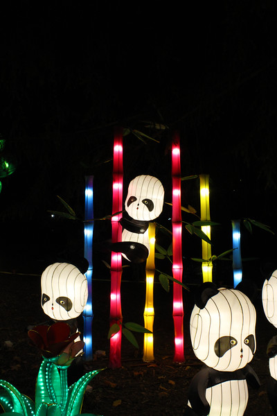 Washington State Chinese Lantern Festival 2015