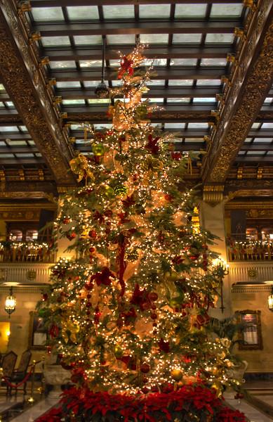Christmas at The Davenport...