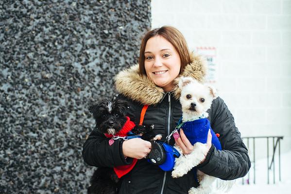 JOED VIERA/STAFF PHOTOGRAPHER- Lockport, NY-Jackie Clare walks her 2 dogs on Main Street. Thursday, January, 29, 2015