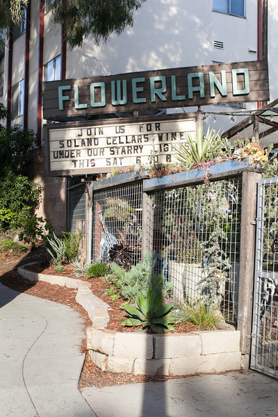 Flowerland-July2015-3144