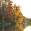 Fall trees on Lake Lancelot.
