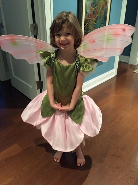 ELLIE'S HALLOWEEN BUTTERFLY COSTUME
