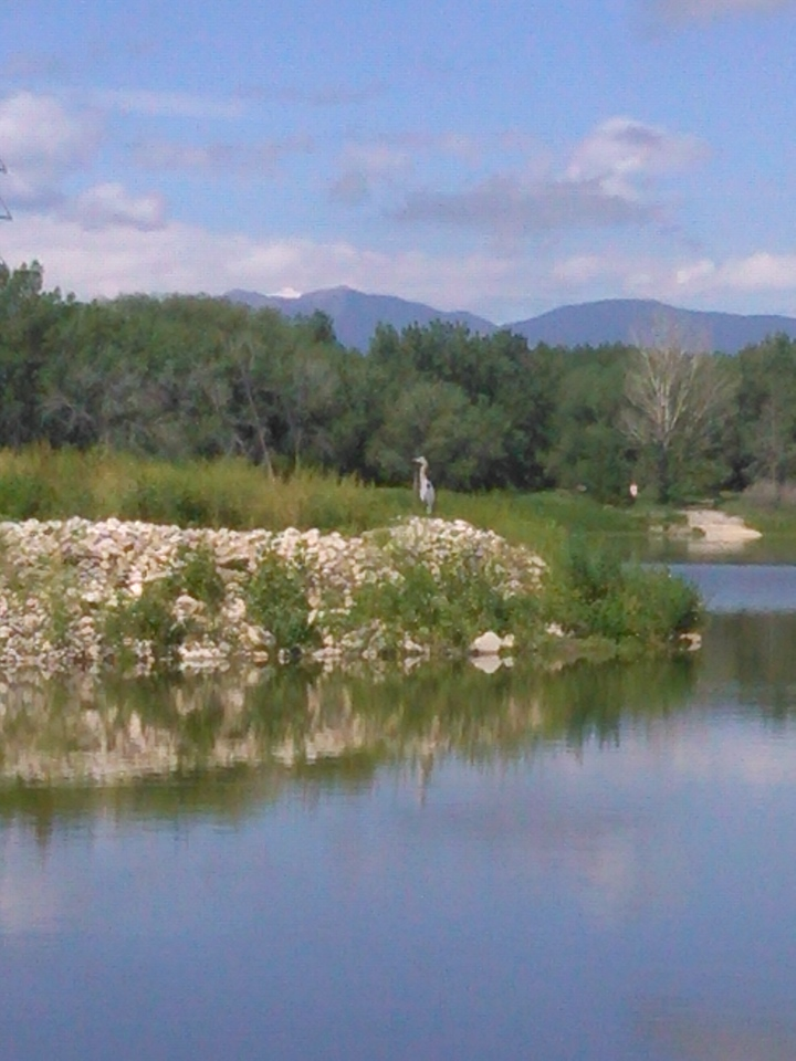 Golden Ponds in Longmont