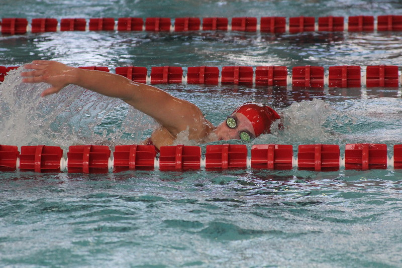 Swimmers compete in the freestyle.