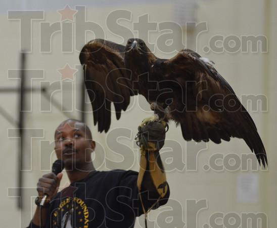 MET 012315 RIO GRANDE BIRDS 5