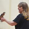MET 012315 RIO GRANDE BIRDS 8