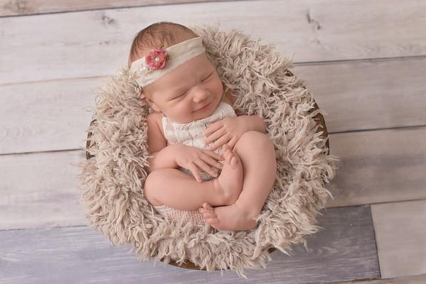 Jovie •Newborn
