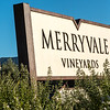 Allegro After Party at Merryvale Vineyards