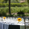 Wine Country Brunch at St. Supery