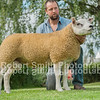 (lot 606) sold for 6800 from Messrs James Innes and sons - Strathbogie Whiplash