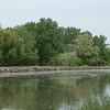 JOED VIERA/STAFF PHOTOGRAPHER-Olcott, NY-Cottonwood   blows into the Canal.
