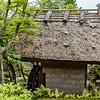 Day 6 May 23 Nara Day Trip