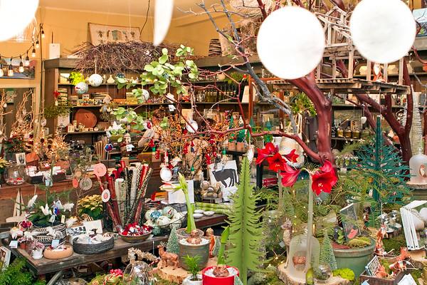 Flowerland-Dec2015-9-4774