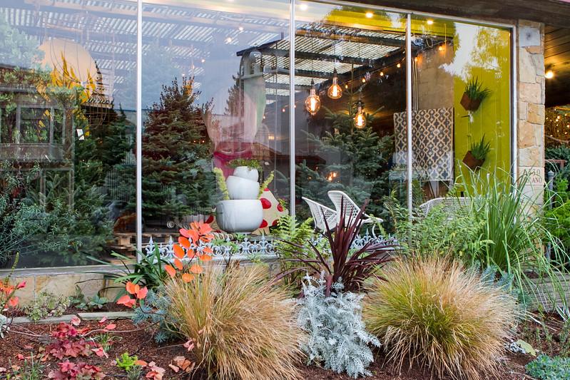 Local Favorite: Flowerland December 2015