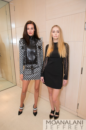 Louis Vuitton 2015 Fall Women's Collection