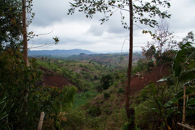 The view from the backyard of one of the families in the church in Mzuzu, which was not unpleasant at all.