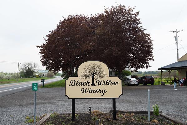 JOED VIERA/STAFF PHOTOGRAPHER-Burt, NY-Black Willow Winery on West Lake Road on Monday, May 11, 2015.