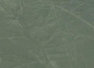 Nazca Lines Condor - Fred Chu '67 P03 P06