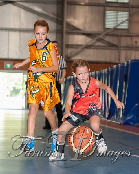 © NJL U14W Bello v Taree (117 of 204)