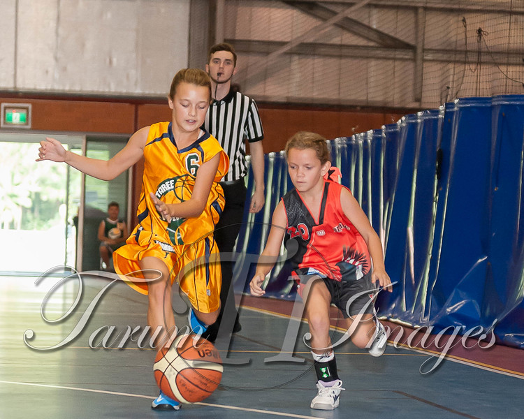 © NJL U14W Bello v Taree (112 of 204)