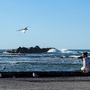 Tracy shoots seagulls on the beach at the Kaikoura Peninsula.