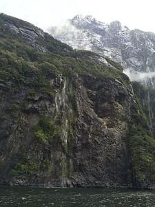 New Zealand by Sea - Katie Stellato