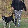 MET112315bland walk