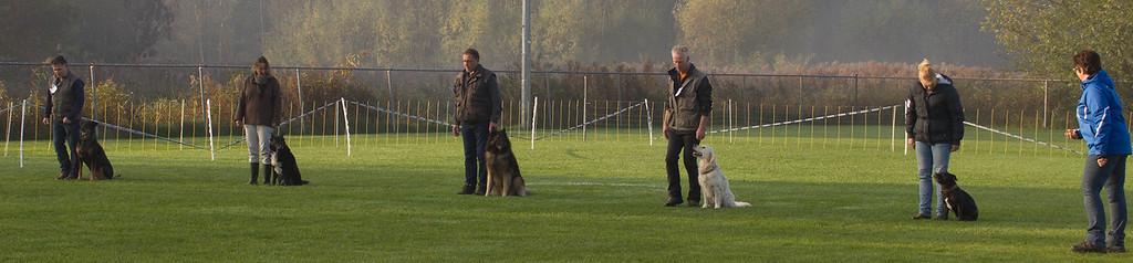FCI Obedience-wedstrijd ~ 1 november 2015