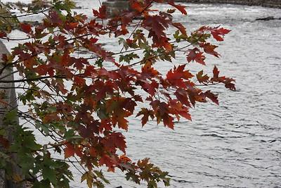 Mississippi River, CP