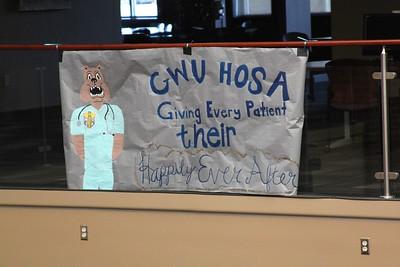 Hosa's healthcare themed banner