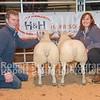 Overall supreme champion lambs