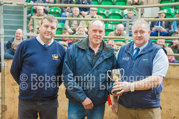 Annual 'Bellingham' Show & Sale of Spring Born Calves - October 22nd 2015