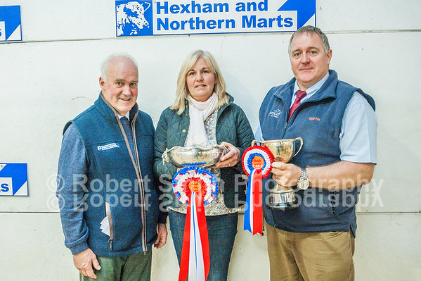 Hexham Store Cattle Show and Sale - October 9th 2015