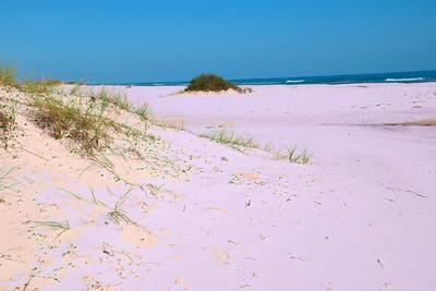 Pensacola_Beach_2015_14