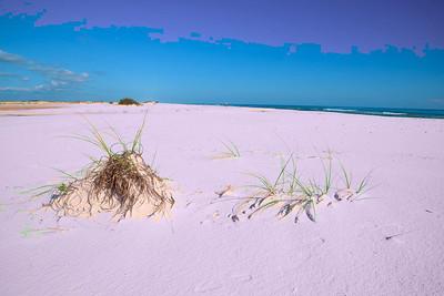 Pensacola_Beach_2015_12