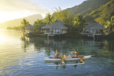 Polynesian Paradise - 2015