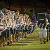 clemson-tiger-band-preseason-camp-2015-234