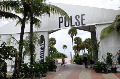 Pulse | 2015