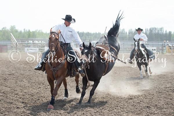 Rocky Pro Rodeo 2015