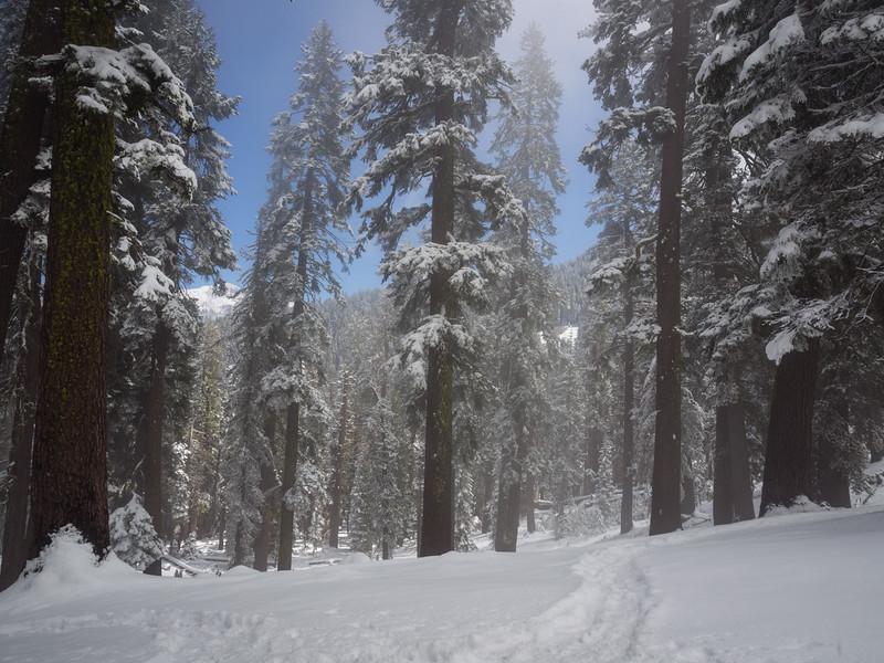 Toward Alta Peak