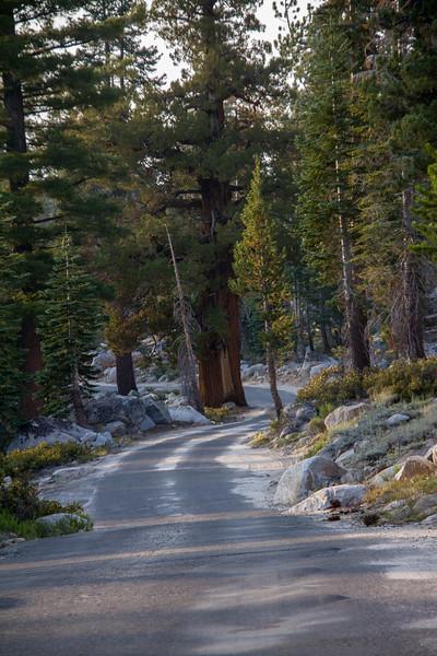 8-16-15 Sierras-434
