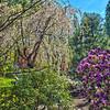 Japanese Gardens....