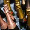 Sugar and Champagne, benefitting Washington Humane Society.  February 4, 2015. Photo by Ben Droz.