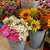 Union Square farmers market in Somerville.