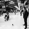 Passengers and pigeons at London Marylebone.
