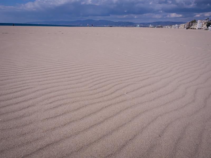 Venice dunes