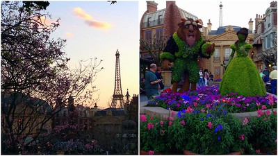 View of the Eiffel Tower and the Beauty and the Beast Topiaries in Epcot's France Pavilion