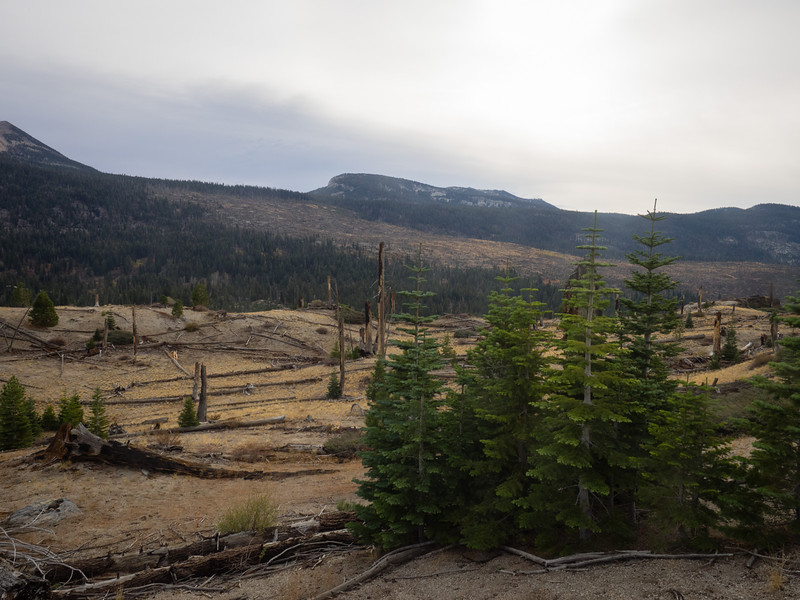 Looking across at Mammoth pass and the burned area