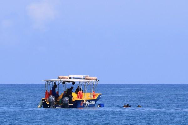 Divers off Sandy Bay, Jamaica